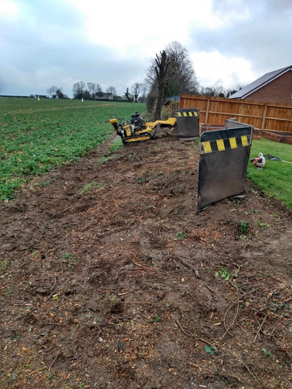 Huge Hedge Clearance Today Customer Gained 3 Meters To His Garden