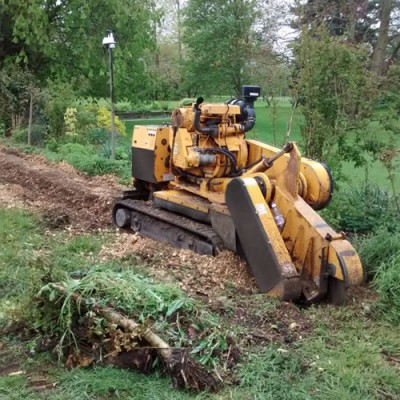 Commercial tree stump grinding
