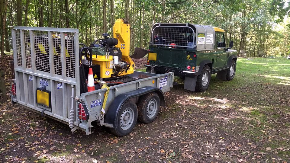 tree stump grinding and removal in Hertfordshire